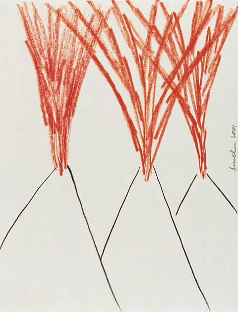 Pietro Finelli, 1 Volcanos