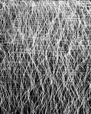 Federico Murgia, Lines and Dots 8, 2015
